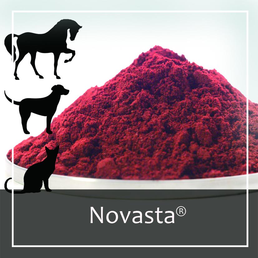 AstaReal Novasta